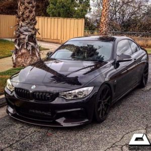 2014-2017 BMW F32 M4 Style Carbon Kidney Grille (5)